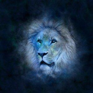 星座系列獅子座:自帶熱情和自信,勇於追求無極限的愛