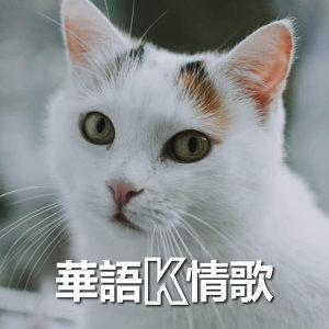 華語K情歌 (持續更新中)