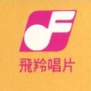 藍心湄飛羚紀錄 (1984~1990)