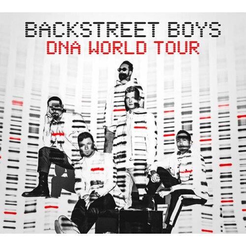 新好男孩  DNA演唱會歌單
