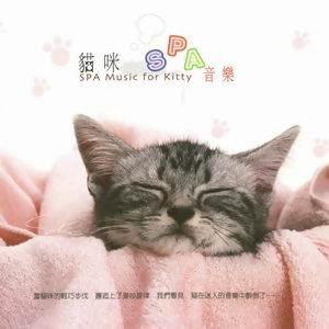 貓咪SPA音樂 - 熱門歌曲