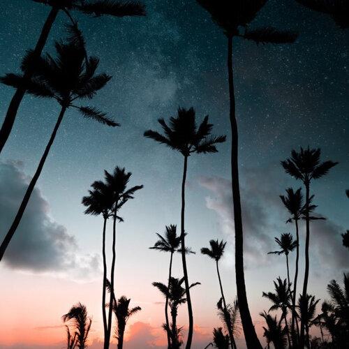 夏夜晚風 讓輕音樂輕輕吹過你耳朵