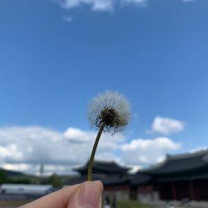 我在首爾天氣晴☀️