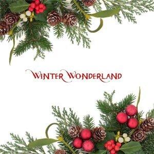 メチャメチャあった!「Winter wonderland」選手権