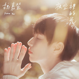 魏嘉瑩 (Arrow Wei) - 熱門歌曲