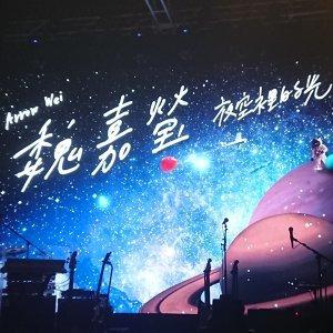 魏嘉瑩 20191220夜空裡的光演唱會歌單