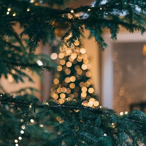 愛在聖誕🎄