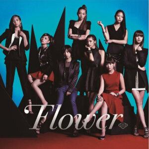 Flower 不重複全曲