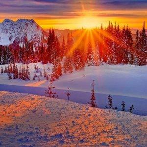揮別陰冷雨天,迎接冬日一縷陽光
