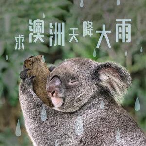 求澳洲天降大雨😢