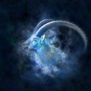 星座系列摩羯座:安静却深藏不漏
