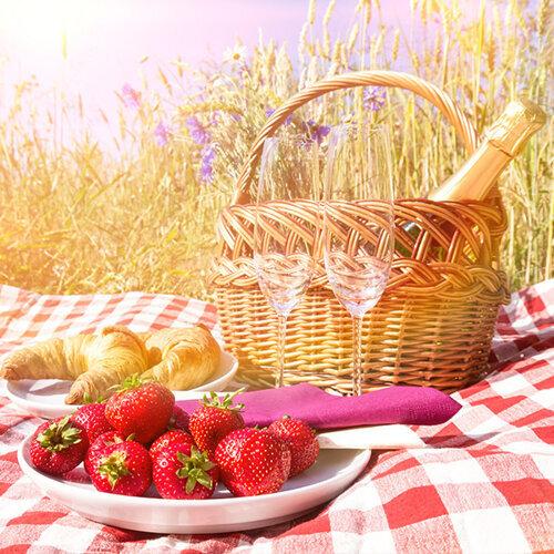 一起野餐去!