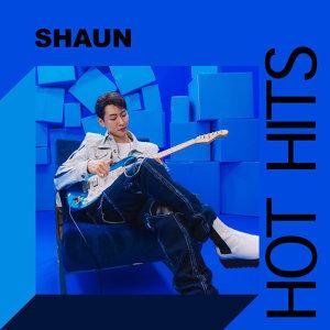 SHAUN TOP HITS