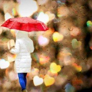☔ 雨紛紛,在說永恆還是離分。