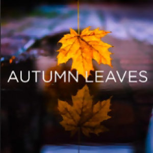 Autumn Leaves -Calm Film Music Playlists