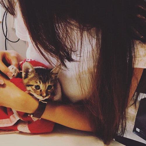 I Love My Cat (ΦωΦ)