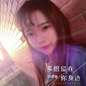 劉增瞳 - 熱門歌曲