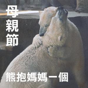 世上只有媽媽好:母親節給媽媽一個大熊抱🐻