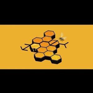 因為你聽過 Honey