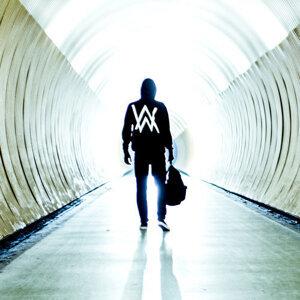 Alan Walker/Tomorrowland/Unmasked Vlog