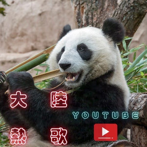 大陸熱歌|2020 Youtube千萬點播歌曲(不定期更新)