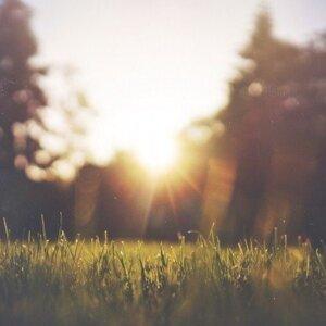當需要一首歌,在心中撒落些溫暖與相信。