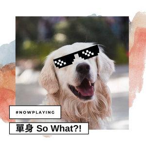 單身 So What?!