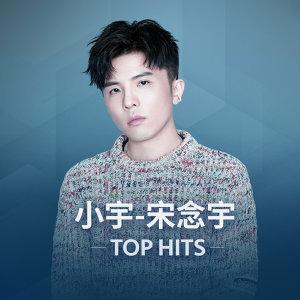 小宇-宋念宇 Top Hits