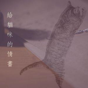 給貓咪的情書