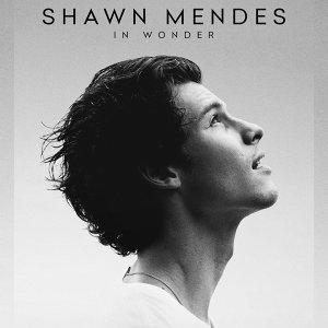 尚恩曼德斯 Netflix紀錄片《Shawn Mendes: In Wonder》完整電影原聲帶