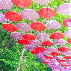 滴滴答答雨的旋律