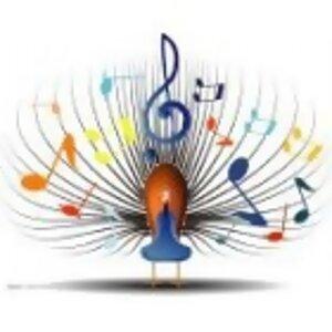 Fever Music II