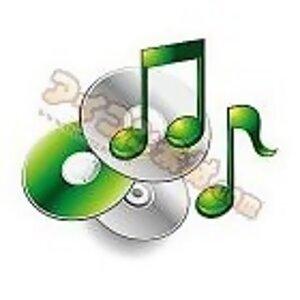 Fever Music VI