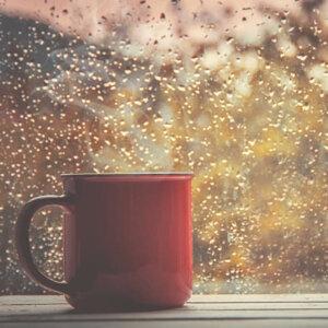Songs on Rainy Day