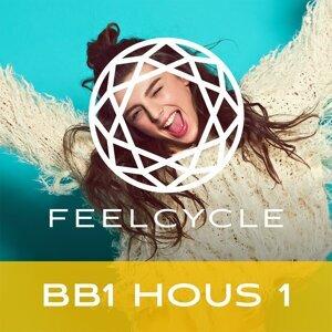 BB1 Hous 1