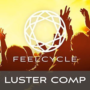 LUSTER 2017 Compilation