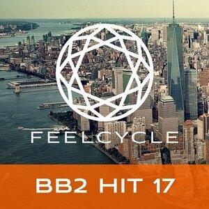 BB2 Hit 17