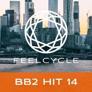 BB2 Hit 14