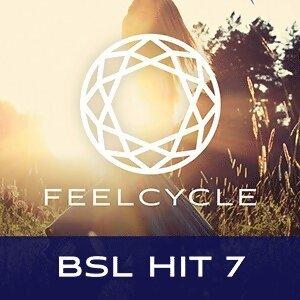 BSL Hit 7