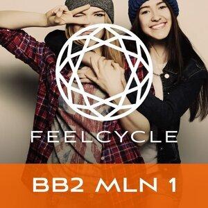 BB2 MLN 1