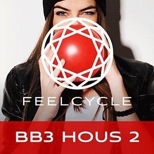 BB3 Hous 2