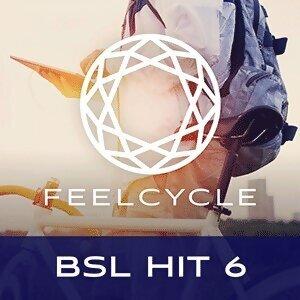 BSL Hit 6