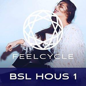 BSL Hous 1