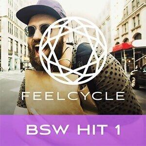 BSW Hit 1