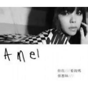 張惠妹A-Mei-好歌不能變冷門