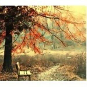 ~憂愁的秋天~
