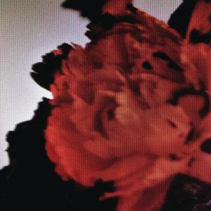 John Legend(約翰傳奇) - All Of Me
