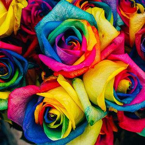 愛情的七種顏色