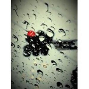 4/25 ,雨