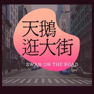 天鵝逛大街 Swan on the Road